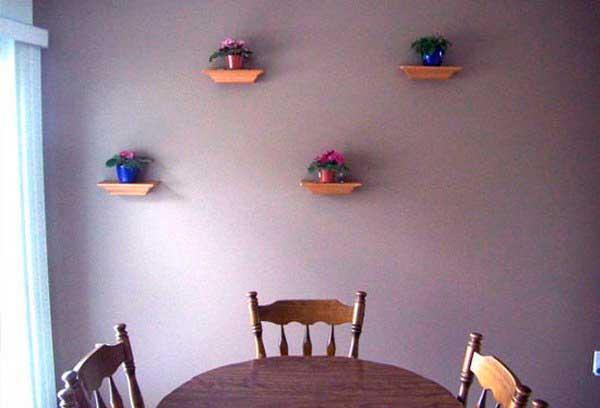 фиалки на стене столовой